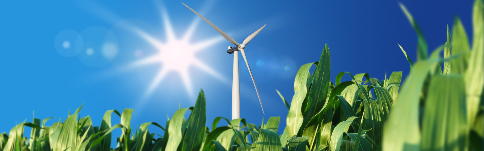MOOC: Sustainable Energy: Design A Renewable Future | TU